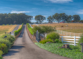 2-web-laughlin-rd-estate-equestrian-property-vineyard-potential-yamhill-county-the-kelly-group-real-estate